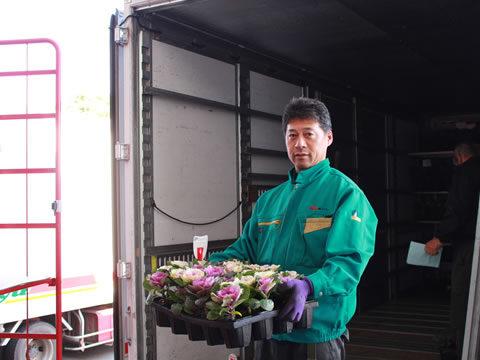 花卉運送作業